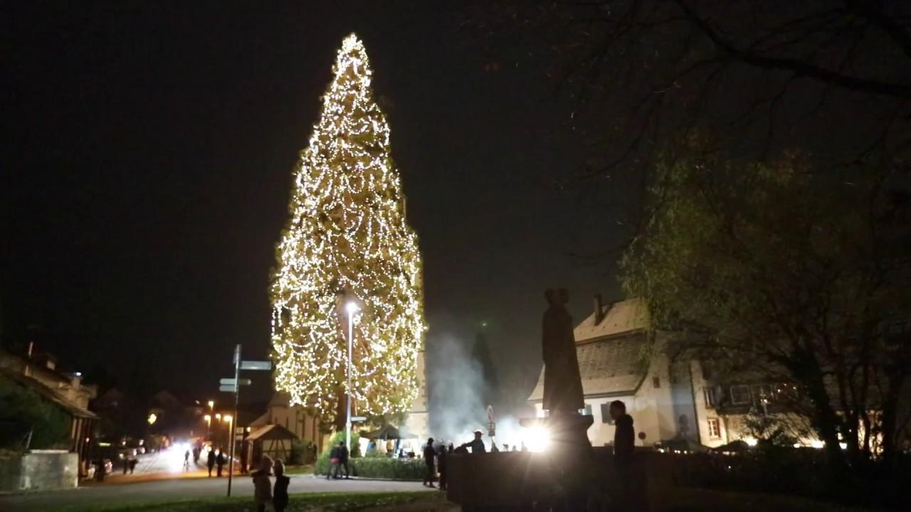Größter Tannenbaum Deutschlands.Der Grösste Weihnachtsbaum 2017 In Deutschland In Eichsel Rheinfelden