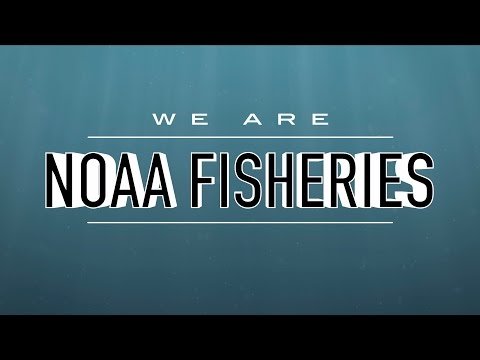 We Are NOAA Fisheries: 2016