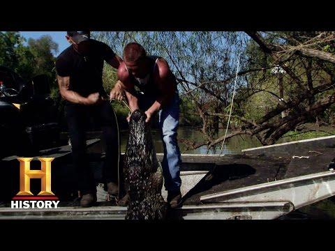 Swamp People: R.J. Takes On a 10-Footer (S7, E1)   History
