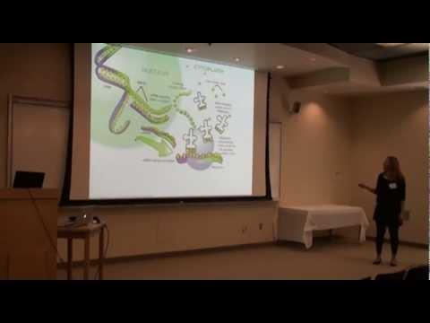 Neta Zuckerman - Biology for Engineers: Part 2