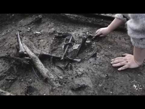 Lauritshøj udgravning i Skødstrup ved Aarhus