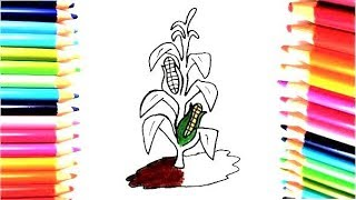 Dibuja y Colorea Maíz - Dibujos Para Niños - Learn colors