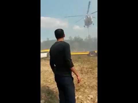 Orman Yangını Mezitler 2
