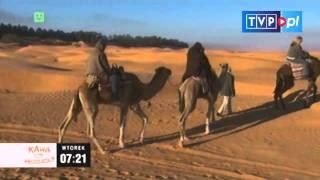 Kawa czy herbata? - Jeden dzień na pustyni