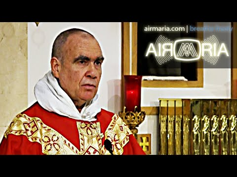 The Essence of Priestly Duty - Nov 12 - Homily - Fr Andre