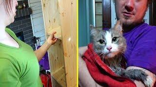 Делаем стелаж | Моем кота | Ремонт второго этажа