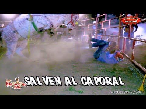 ¡¡SALVEN AL CAPORAL ESTÁ EN PELIGRO!! CON ESTOS TOROS DEL RANCHO H3H Y RANCHO EL PLAN EN TOTOLIMISPA