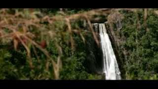 BosCafé (trailer)