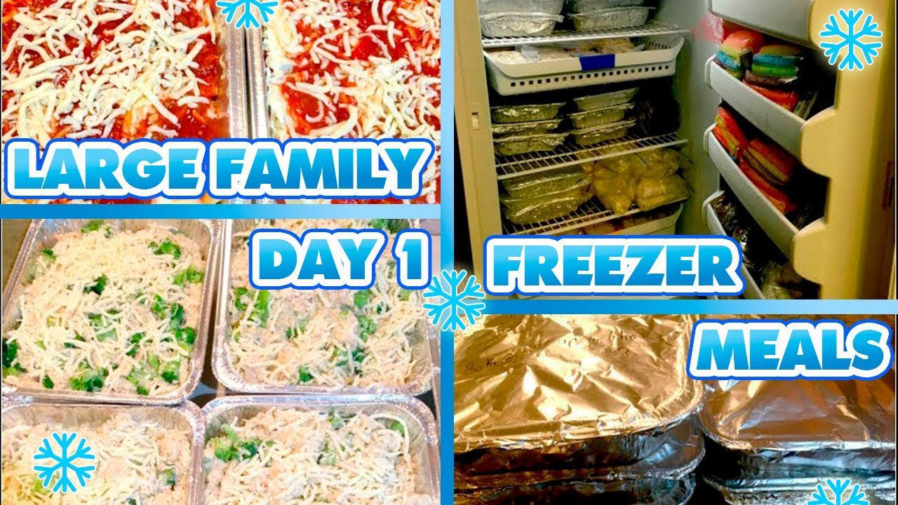 LARGE FAMILY FREEZER MEALS | DAY TWO | 26 DINNERS, 21 ...