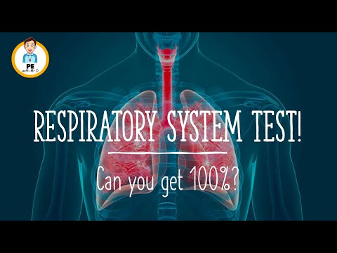 QUIZ: Anatomy of the Respiratory System! Can you get 100%?