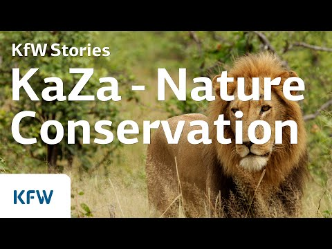 KaZa - The world's largest cross-border conservation park