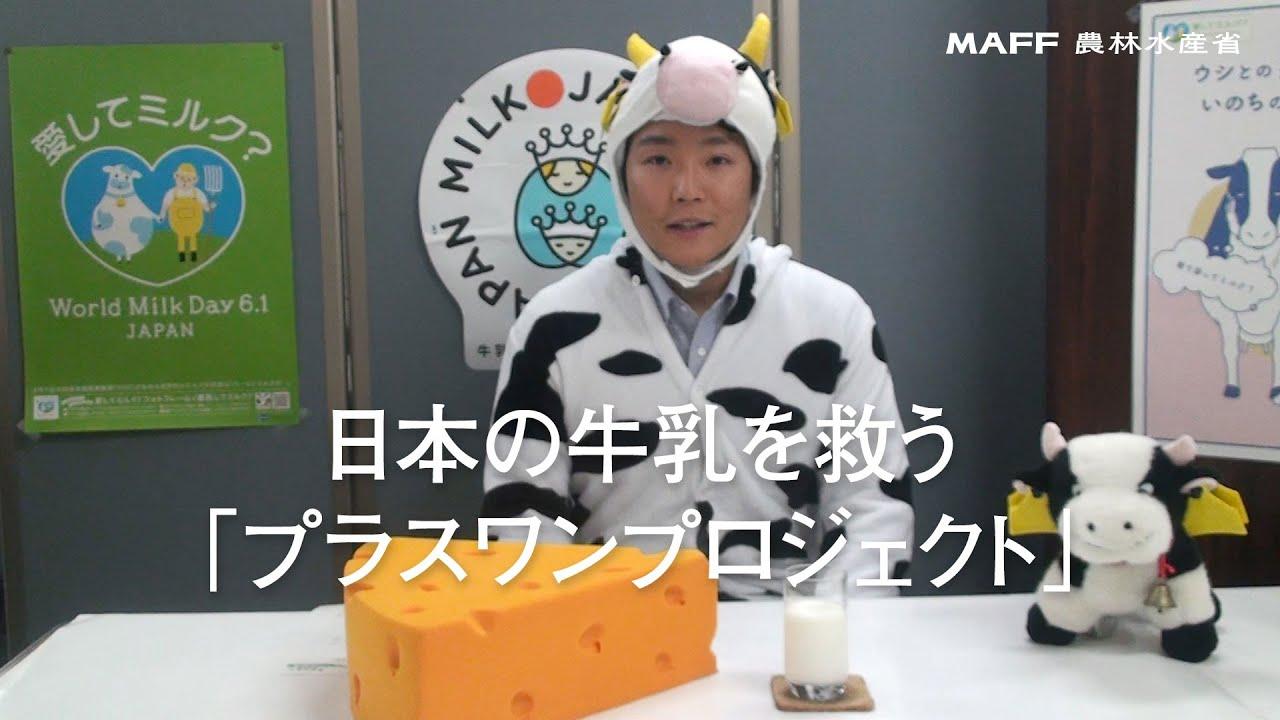 Photo of 日本の牛乳を救う「プラスワンプロジェクト」 | maffchannel
