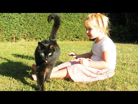[VLOG] On joue avec le chat Ficelle dehors ! Playing with our cat ! Outoor.