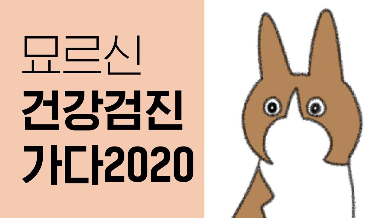 묘르신 건강검진 가다 2020