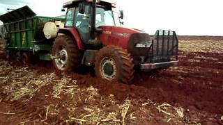 Sugarcane Planting in Brazil