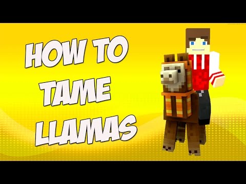 how-to-tame-llamas-in-minecraft