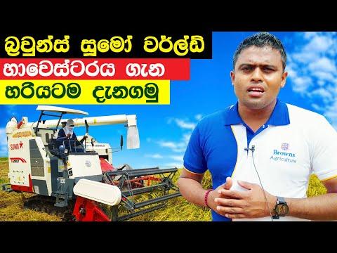 Browns Sumo World Harvester Review Sri Lanka