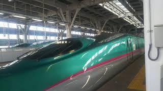 【再びお忍びで青森へ】北海道新幹線 はやぶさ21号 新函館北斗行き E5系  2019.09.07