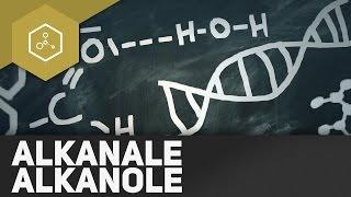 Alkanale,  Alkanone, Aldehyde – Was ist das? REMAKE