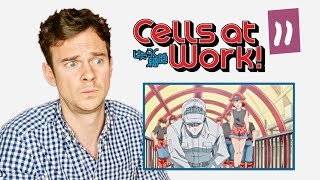 "DOCTOR reacts to CELLS AT WORK! // Episode 11 // ""Heat Stroke"""