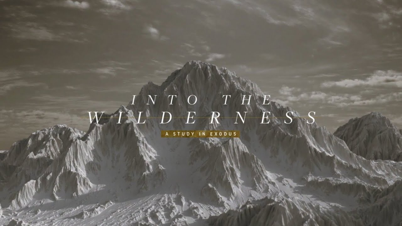 Into the Wilderness   When the Odds are Against You