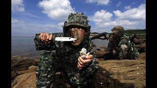 俄军事专家断言:如果战争打响,中国陆军百万雄师将一无是处!