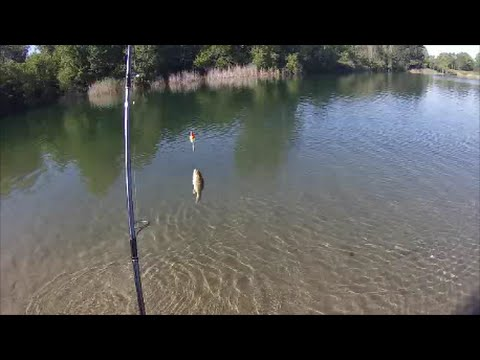 Popular springs lake in mississippi fishing with wage r for Fishing ponds columbus ohio