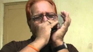 Jana Gana Man Adhinaik Jai He - INDIA