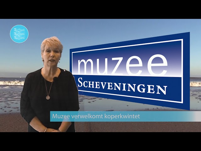 Omroep Scheveningen - Nieuwsflits
