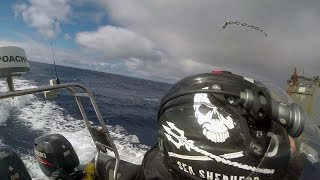 Sea Shepherd Assaulted While Attempting to Communicate with The Thunder