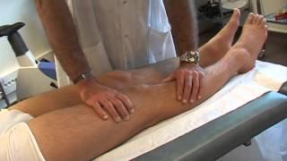 Tendinopathie du genou : Le Tenseur du Fascia Lata