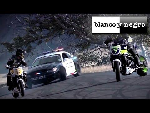 Alex Guesta - Who Said (Official Video)