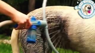 Супер гаджеты для домашних животных домашние животны