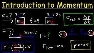Introduction to Momentum, Force, Newton's Second Law, Conservation of Linear Momentum, Physics