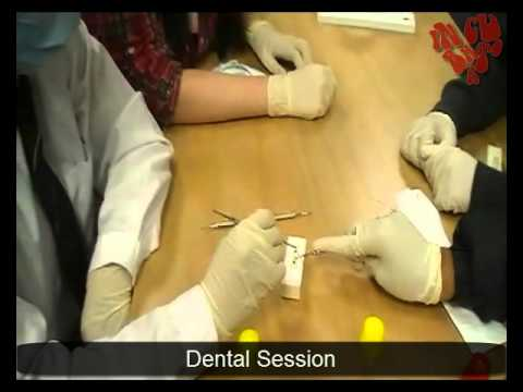 dental services during programme incubator session