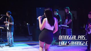 Download lagu RINDI ANTIKA - DITINGGAL PAS LAGI SAYANG SAYANG E [ COVER ] [ LAROSA JUNIOR ]