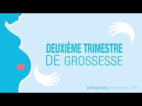 grossesse semaine par semaine, trimestres estomac distendu distension abdominale
