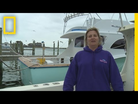 Boat Tour: Reel Action | Wicked Tuna: Outer Banks