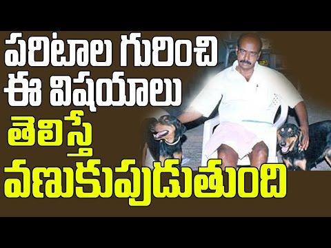 పరిటాల రవి గురించి ఈ విషయాలు తెలిస్తే వణుకు పుడుతుంది   Paritala Ravi   TDP   Chandrababu Naidu