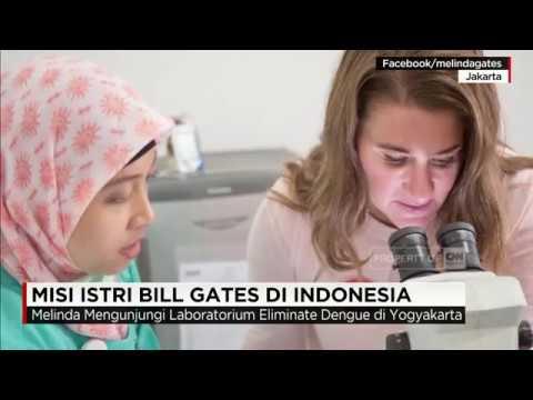 Misi Istri Bill Gates di Indonesia