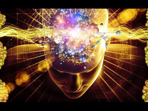 5 Fatos Sobre O Cérebro - Você vai se surpreender!