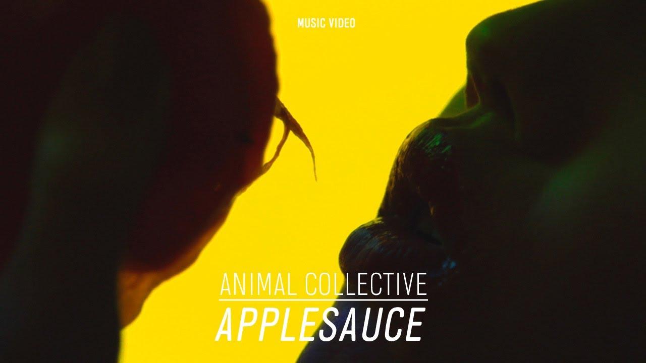 Animal Collective -