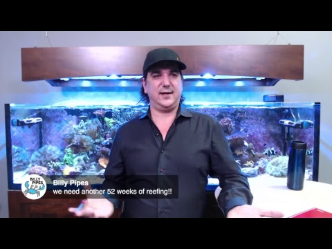 #AskBRStv LIVE Preview of BRS/WWC System Ep8: Mechanical Filtration
