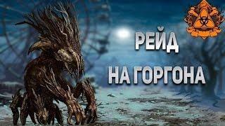 КОЛЯНИЩЕ -VV- 5 РЕЙДОВ НА ГОРГОНА!