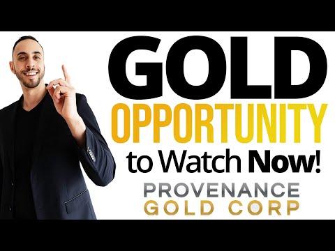 One HOT Gold Stock Ready To Rally? Provenance Gold CEO Interview w/ Rauno Perttu (CSE:PAU)