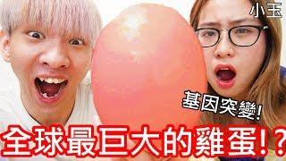【小玉】基因突變!全球最巨大的雞蛋!?【35公分鴕鳥蛋】