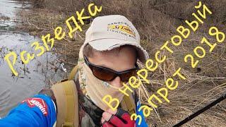 Рыболовная РАЗВЕДКА в 5ти км от Мценска, перед окончанием запрета 2018!