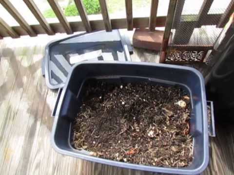 Apartment Balcony Composting