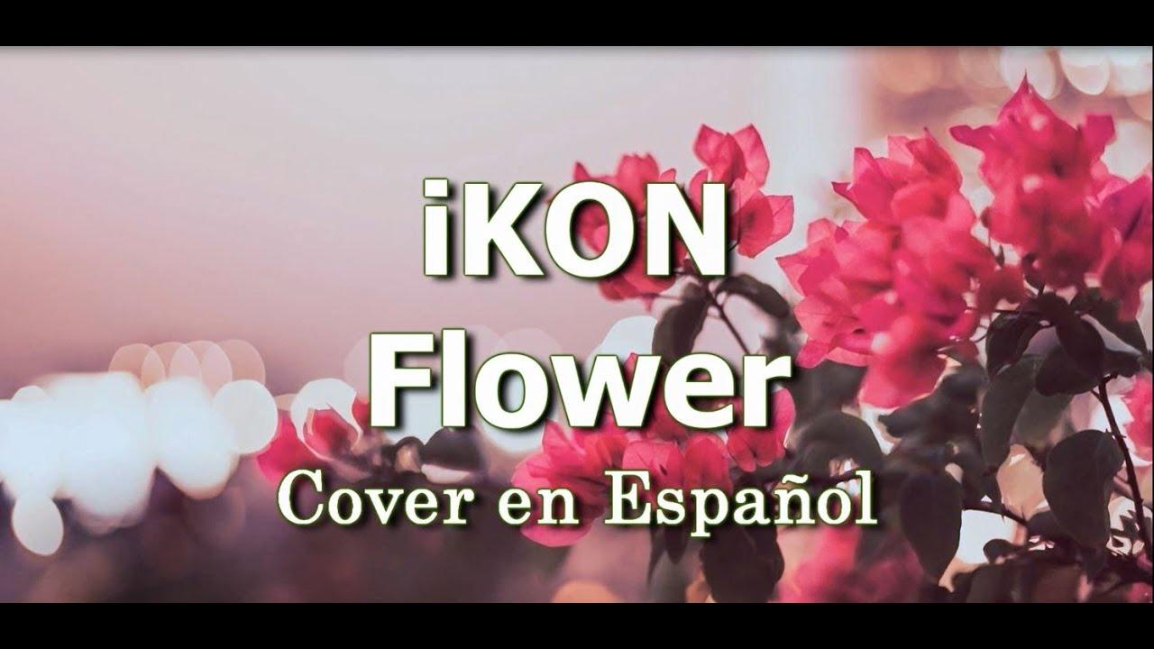 iKON - Flower Cover en Español por Kathypolar
