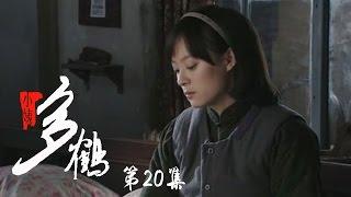 小姨多鹤 20 | Auntie Duohe 20 (主演:孙俪 姜武 闫学晶)